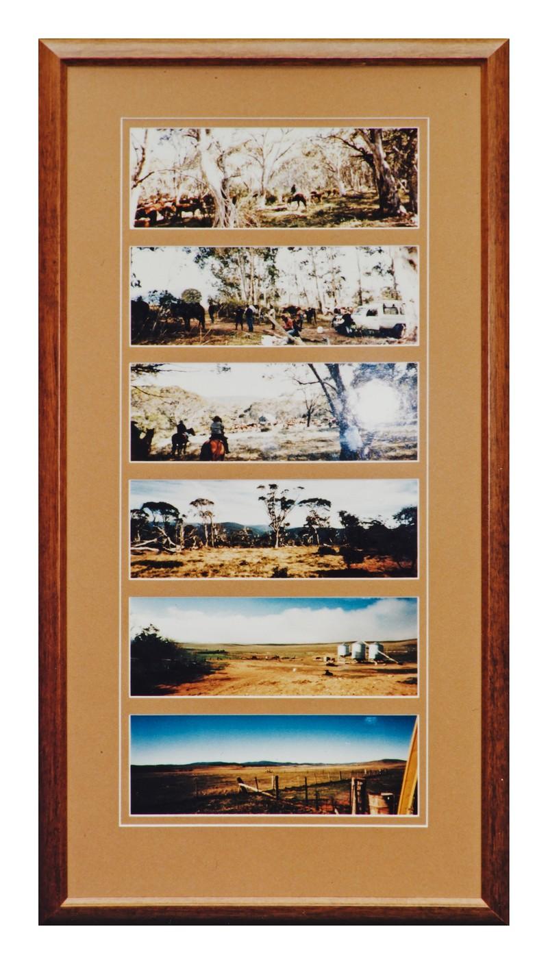 NAME HISTORY & FAMILY PHOTOGRAPHS - Final Finish Framing